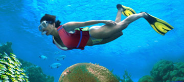 cancun activities water sports tours and attractions