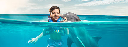 Isla Mujeres-Dolphin Encounter