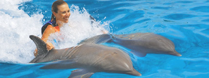 Cozumel - Dolphin Royal Swim VIP