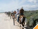 Gallery Horseback Ride and Beach time at Punta Sur