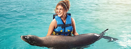 Cozumel-Sea Lion Discovery