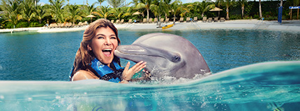 Dolphin Cayman - Dolphin Lovers´ Swim