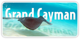 deals promotions discounts Grand Cayman