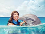 Gallery Dolphin Swim Adventure