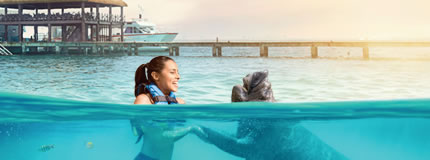 Isla Mujeres - Royal Swim VIP Plus (Sea Life Discovery Plus)