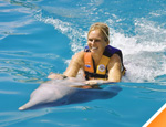 Gallery Dolphin Swim and Ride