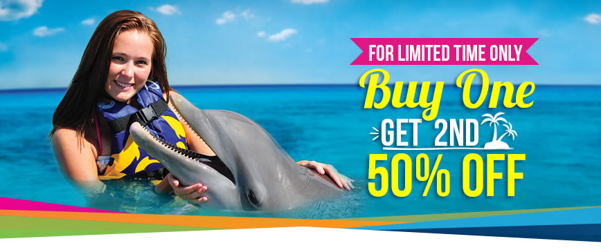 Dolphin discovery coupon