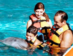 Rivier Maya Dolphin Encounter, Quintana Roo, Mexico - Tour By Mexico ®