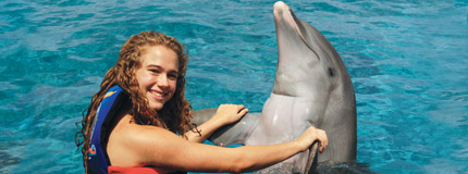 Riviera Maya-Dolphin Encounter