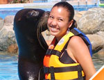 Puerto Vallarta Sea Lion Discovery, Jalisco, Mexico - Tour By Mexico ®